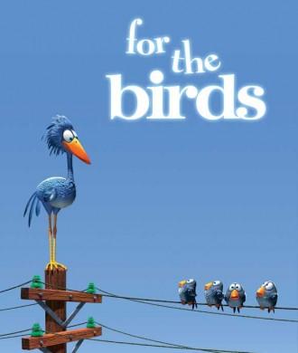 دانلود انیمیشن برای پرندگان